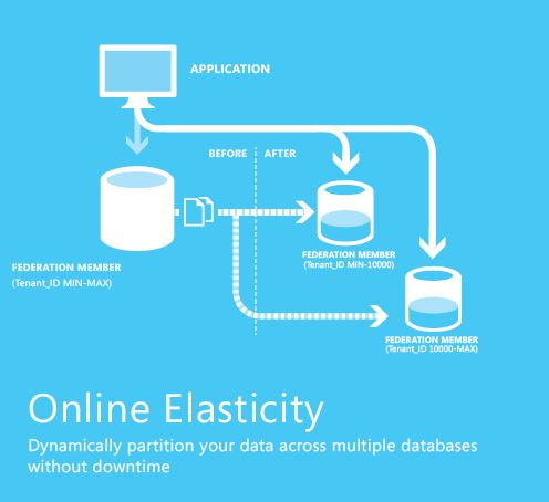 Online Elasticity