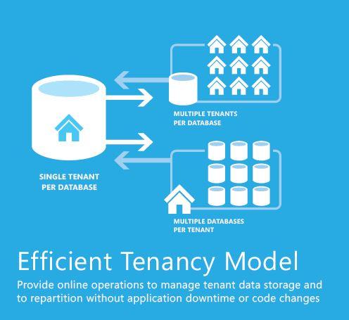 Tenancy Model